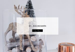 diy-bois-enchantes-latelier-delisa